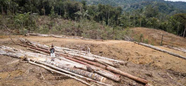 Apokypsa padá na Indonésii